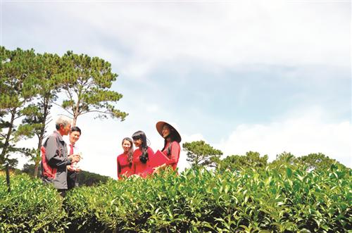 Dấu ấn Agribank trong hành trình 70 năm xây dựng và phát triển hệ thống ngân hàng Việt Nam