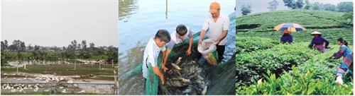 Phát triển bền vững Ngân hàng Chính sách xã hội Việt Nam trong giai đoạn hiện nay