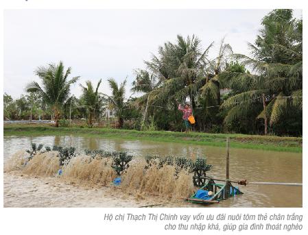 Vốn tín dụng chính sách góp phần giảm nghèo tại Trà Vinh