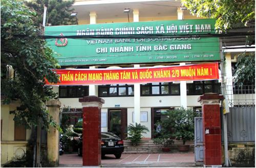 Ngân hàng Chính sách xã hội Bắc Giang đáp ứng kịp thời nhu cầu vay vốn phát triển kinh tế của nhân dân