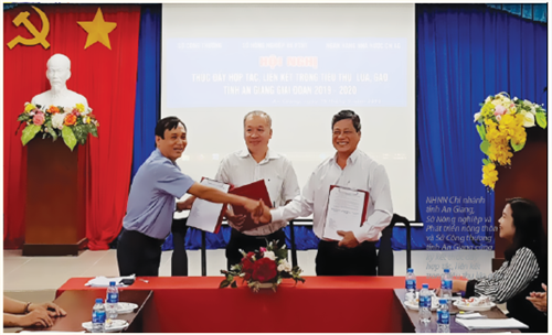 Hệ thống ngân hàng tỉnh An Giang thực hiện hiệu quả mục tiêu kép