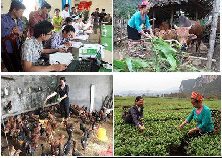 Ngân hàng Chính sách xã hội tỉnh Thái Nguyên đẩy mạnh các chương trình tín dụng ưu đãi vì người nghèo