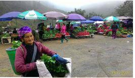 Thúc đẩy tài chính toàn diện để giảm nghèo tại Việt Nam