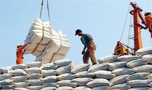 Ngành Ngân hàng góp phần tháo gỡ nút thắt vận hành chuỗi thu mua lúa gạo  khu vực đồng bằng sông Cửu Long