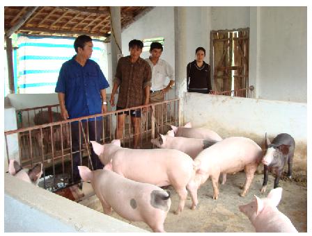 Một số bài học kinh nghiệm từ thực tiễn của Chi nhánh Ngân hàng Chính sách xã hội tỉnh Quảng Bình