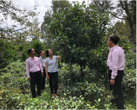 Hoạt động Ngân hàng trên địa bàn Lâm Đồng góp phần thúc đẩy Kinh tế - Xã hội của tỉnh