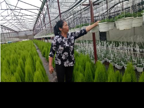Phát triển nông nghiệp sạch, nông nghiệp công nghệ cao là hướng đi tất yếu