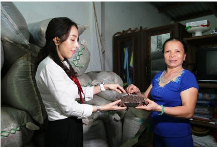 Agribank đồng hành cùng đặc sản tiêu Phú Quốc